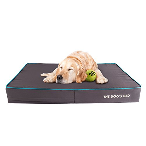 The Dog's Bed Orthopedic Dog Bed XL Grey/Blue 46x28, Premium Memory Foam, Pain Relief for Arthritis, Hip & Elbow Dysplasia, Post Surgery, Lameness, Supportive, Calming, Waterproof Washable Cover