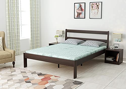 Bluewud Roverb Engineered Wood Bed Without Storage  Queen Size, Wenge