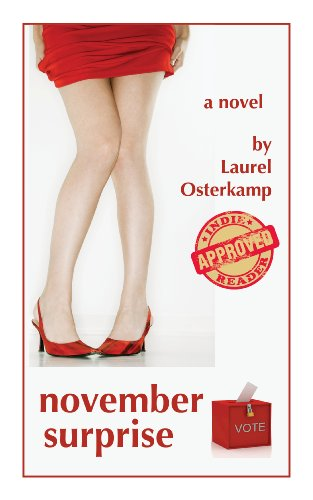 <strong>Enjoy This Free Excerpt From KND Romance of The Week: Award Winning Author Laurel Osterkamp's <em>November Surprise</em> – 4.4 Stars on 25 Reviews & Just $2.99 or Free via Kindle Lending Library</strong>