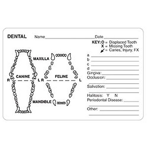 Roll of 240 Dental Grid Canine//Feline 4 x 2-5//8 White Label