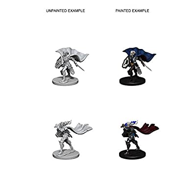Wizkids Pathfinder Deep Cuts Unpainted Minis: Elf Female Paladin: Toys & Games