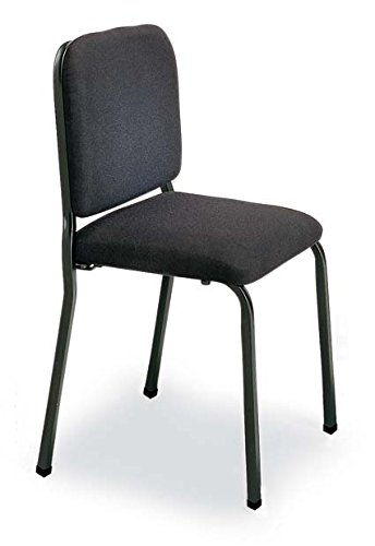 Merveilleux Wenger Cellist Chair