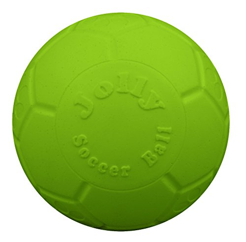 Jolly Pets 8' Soccer Ball, Green Apple, Large/X-Large