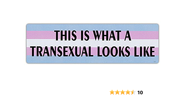 THIS IS WHAT A TRANSEXUAL LOOKS LIKE Novelty Car Magnet
