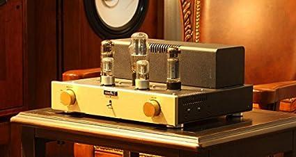 GOWE tubo amplificador chasis de aluminio amplificador de válvulas