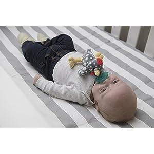 Mary Meyer WubbaNub Infant Pacifier ~ Rocky Chicken