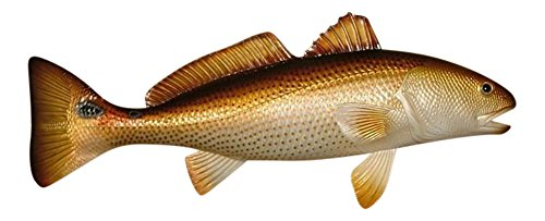 Charlotte International Replica Red Drum Fish Ocean Restaurant Wall Decor
