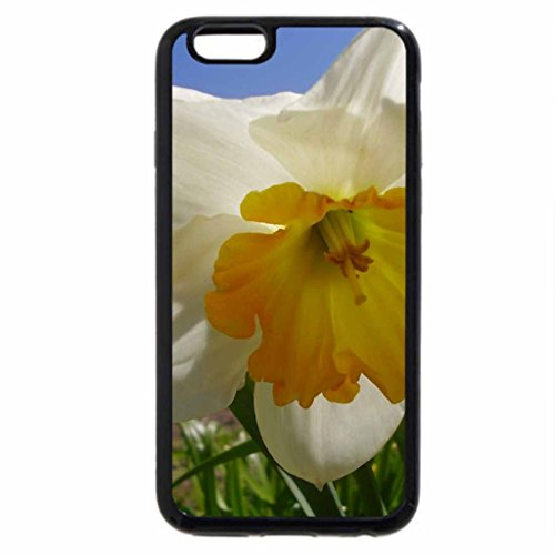 iPhone 6S / iPhone 6 Case (Black) Pretty flowers