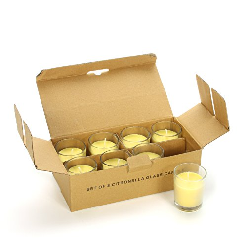 Hosley Highly Scented Set of 24, Citronella, Rosemary, Sage, Lemon Grass Blend, Essential Oils, Votive Candles in Clear Glass. Burns Upto 12 Hours Each. Great Gift for Home, Patio, Gardens O3 by Hosley (Image #1)