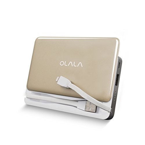 Portable Charger For Ipad And Iphone - 8