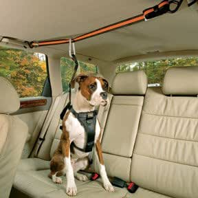Kurgo Automobile Zip-Line for Dogs