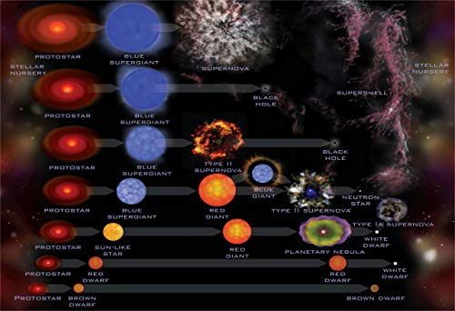 (New Horizon Aviation, LLC Life Cycle of a Star Hi Gloss Space Poster Fine Art Print)