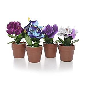 DollarItemDirect Pansy Plant on Potted, 2.75x2.75in, H7in, Case of 24 115