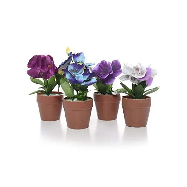 DollarItemDirect Pansy Plant on Potted, 2.75 x 2.75 inches, H7 inches, Case of 24