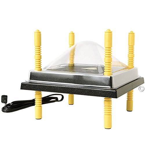 Premier Chick Heating Plate Kit – Includes Cover and Warms Up to 15 Chicks – 10 W x 10 L