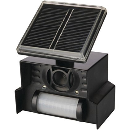 P3 P7815 Solar Animal Repeller Motion Activated W/Powerful Strobe Light Home & Garden