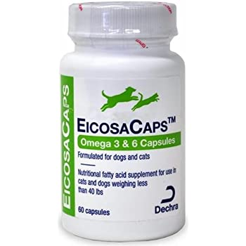 Eicosaderm liquid for dogs and cats 32oz for Liquid fish oil for dogs
