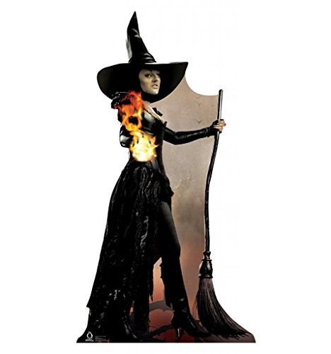 [Wicked Witch of the West - Disney's Oz: The Great and Powerful - Advanced Graphics Life Size Cardboard] (Witch Cutouts)