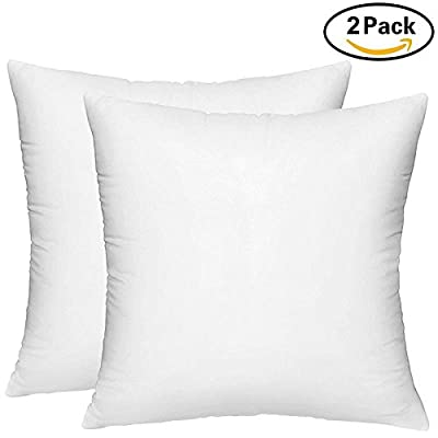 Renesmee Collections Indoor/Outdoor 6D Euro Pillows Set of 2 Square Pillow for Decorative Bed Pillow Shams - Hypoallergenic, Down Alternative Fill (2 Pack)
