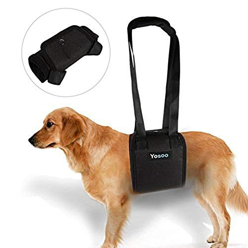 Yosoo Portable Dog Lift Support Harness – Helps Dog with Weak Front Or Rear Legs Stand Up, Walk, Get Into Cars, Climb Stairs for Disable, Injured, Elderly Pet (M)