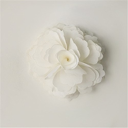 White Shoe Charms - Douqu High Heel Chiffon Ribbon Rose Flower Fashion Sandals Shoe Clips Charms Decoration Pair (White)