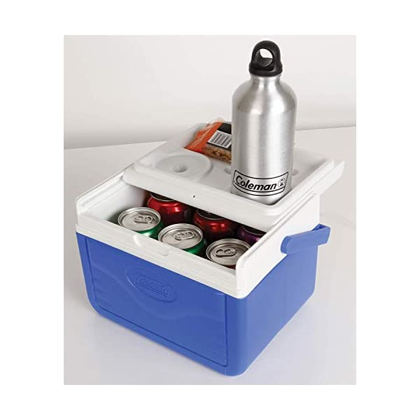 Coleman Performance 6 Personal Cooler, 4 Litre, Small Cool Box for Food and Drinks, Robust Ice Box Suitable for 6 Small…