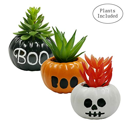 JIUCHEN Artificial Succulent Plants, Assorted Decorative Faux Succulent Potted Fake Plants in Scary Pumpkin Pots,Halloween Décor, Set of 3(Boo and Skull