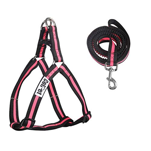 ColPet Dog Leash Harness Adjustable & Heavy Duty Durable Neoprene Dog Leash Collar with Elastic Leash for Training Walking Running, Best for Small Medium Dog, Small, Pink