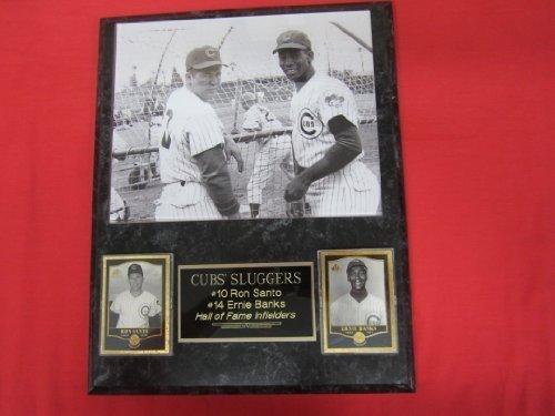 Chicago Cubs Clubhouse - Cubs Ernie Banks Ron Santo 2 Card Collector Plaque w/8x10 RARE Photo!