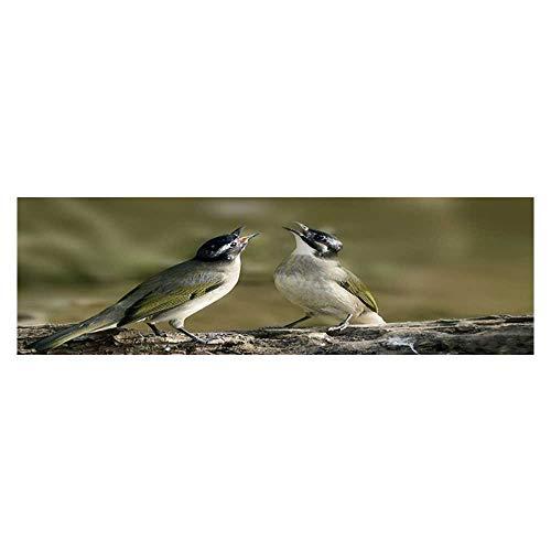 Leighhome Aquarium Decorative Two Birds are Singing Aquarium Background Sticker Wallpaper L29.5 x H19.6]()