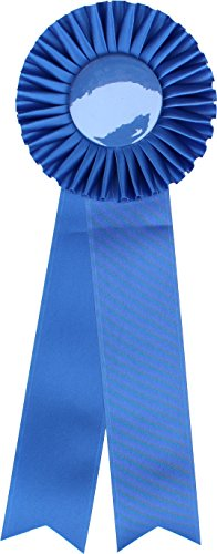 Ribbon Award Rosette - for Prize, Party, Gift, or Prop - 4