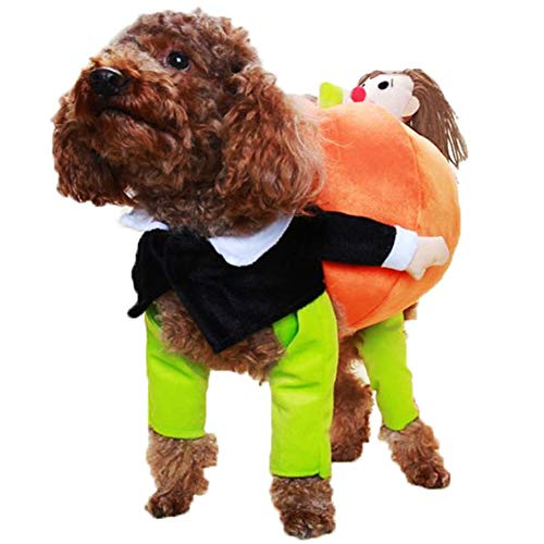 Kanggest Cat Puppy Funny Halloween Costume Carrying Pumpkin Pet Jumpsuit Set Fun Perfect Pet Clothing Orange for $<!--$16.07-->