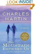 #10: The Mountain Between Us: A Novel