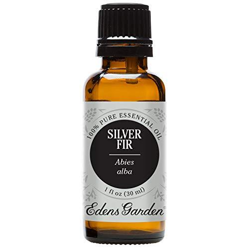Edens Garden Silver Fir 100% Pure Therapeutic Grade Essential Oil, 30 mL
