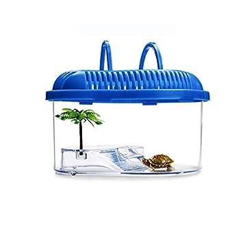 QNMM Pecera pequeña, Caja de cría de Tortugas con Plataforma de ...