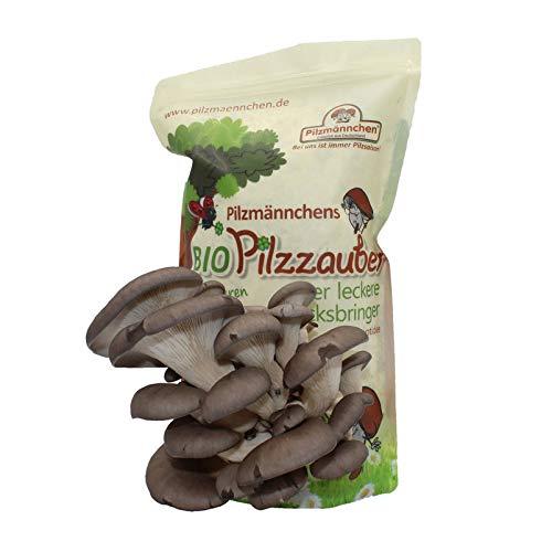 Pilzmä nnchen Bio Pilzzucht-Tü te Pilzzauber Austernpilz, mit Anleitung und Pilzrezepten, 500 g Pilzmännchen