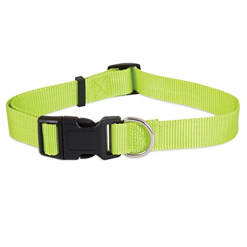Petmate Nylon Adjustable Dog Collar, Small 3/8