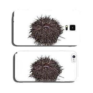 Fresh raw sea urchin cell phone cover case Samsung S5