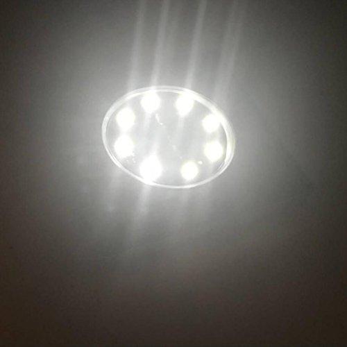 External Decking Lights in Florida - 3