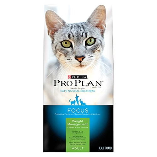 weight loss cat food - 2