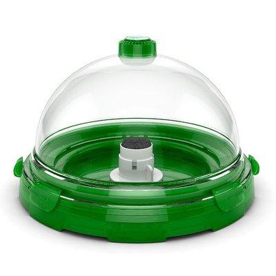 Desktop Aquarium Kit Color: Green
