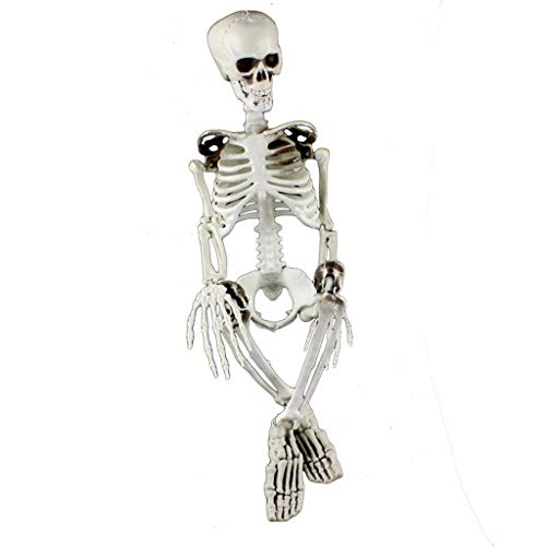 Fan-Ling Jointed Human Skeleton Decoration,Halloween Party Decoration Poseable Full Size Human Skull Skeleton Anatomical,Halloween SkeletonProps, Best Halloween Decoration (B:90 X 25 X 15cm)