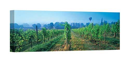 Easy Art Prints Panoramic Images's 'UK, Great Britain, Sussex, Vineyard and hot air Balloon' Premium Canvas Art 36 x 12