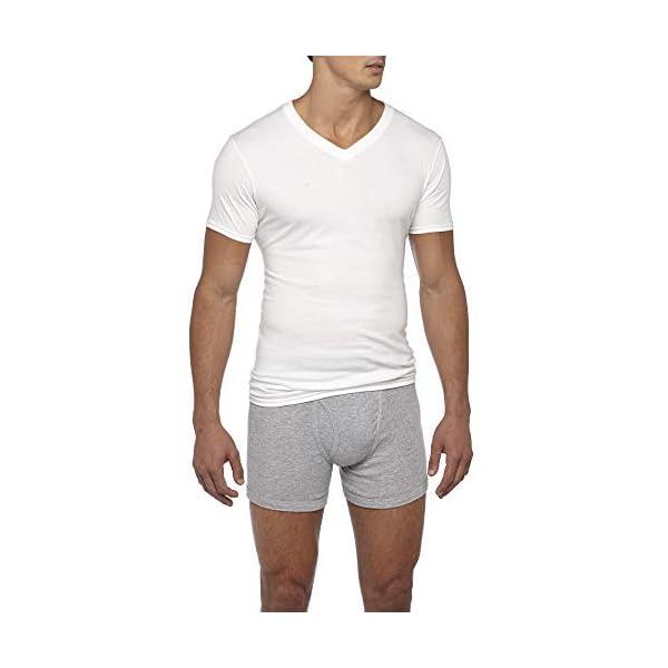 Gildan Men's Assorted V-Neck T-Shirts Multipack