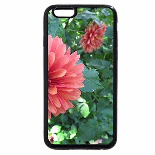 iPhone 6S / iPhone 6 Case (Black) A Good day at Edmonton Garden AB 15