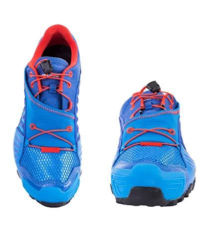 firebrick Dynafit Homme uppercut Ms 4053865279100 Chaussures Sl Blue 12 Feline de Trail 1TISqrwT