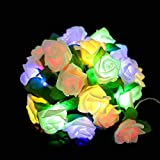 coersd Indoor String Lights Rose LED Window Curtain Lights String Lamp Party Decor with 20 LED Beads (Multicolor)