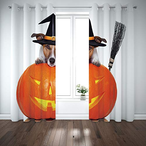SCOCICI Grommet Satin Window Curtains Drapes [ Halloween,Witch Dog with a Broomstick on Large Pumpkin Fun Humorous Hilarious Animal Print,Multicolor ] for Living Room Bedroom Kitchen Cafe