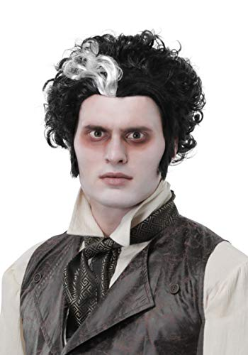 Fun Costumes Sweeney Todd Adult Wig Standard Black -