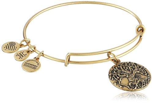 Alex Ani Expandable Rafaelian Bracelet